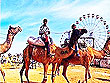 Pushkar Fair Rajasthan | Rajasthan City Tour | Tourist Cities in Rajasthan