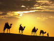 Desert Delight Tour | North India Desert Tour | North India Desert Holidays | Rajasthan Desert Holidays | Rajasthan Desert Safari