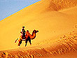 Camel Safari Tour in India | Desert Safari in Rajasthan | Rajasthan Desert Ssafari | Desert Safari Tours in Rajasthan
