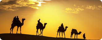 Rajasthan Tour | Rajasthan Tour India | Rajasthan Special Tour Package