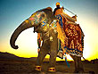 The Maharaja Rajasthan Tour | Rajasthan Tourism in India | Special Rajasthan Tours